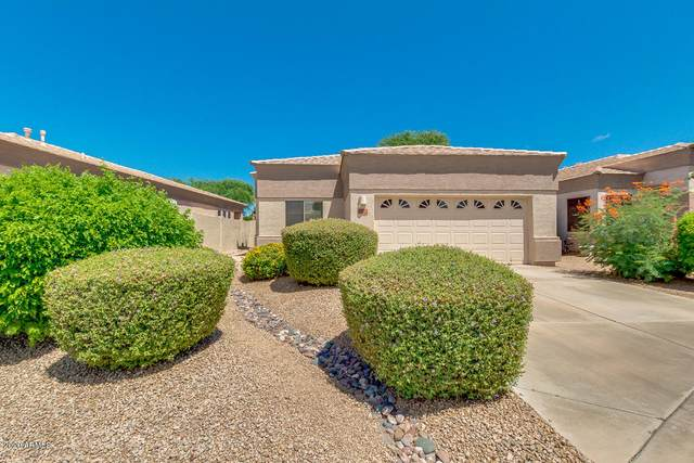 6342 W Blackhawk Drive, Glendale, AZ 85308 (MLS #6097393) :: Howe Realty