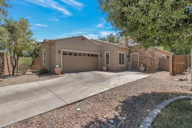 12302 N 147TH Drive, Surprise, AZ 85379 (MLS #6097402) :: The Garcia Group