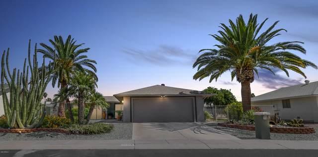 13138 W Paintbrush Drive, Sun City West, AZ 85375 (MLS #6097430) :: Balboa Realty