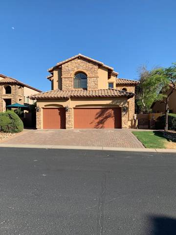 6857 E Portia Street, Mesa, AZ 85207 (MLS #6097453) :: Klaus Team Real Estate Solutions