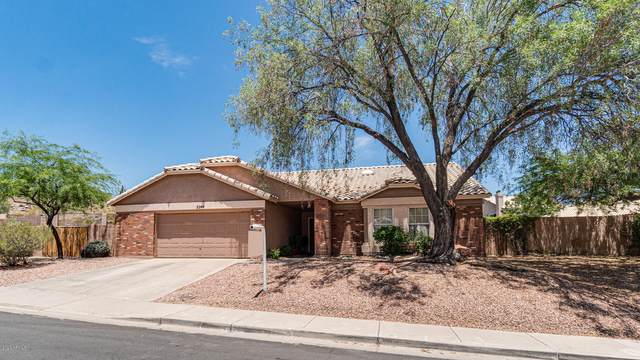 2244 E Taxidea Way, Phoenix, AZ 85048 (MLS #6097506) :: Brett Tanner Home Selling Team