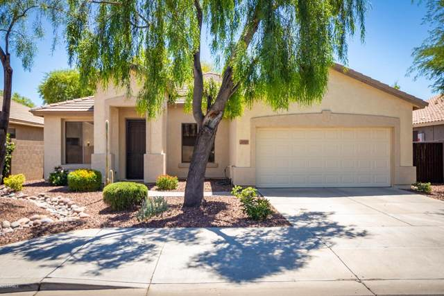 4321 N 125TH Avenue, Litchfield Park, AZ 85340 (MLS #6097552) :: The Laughton Team