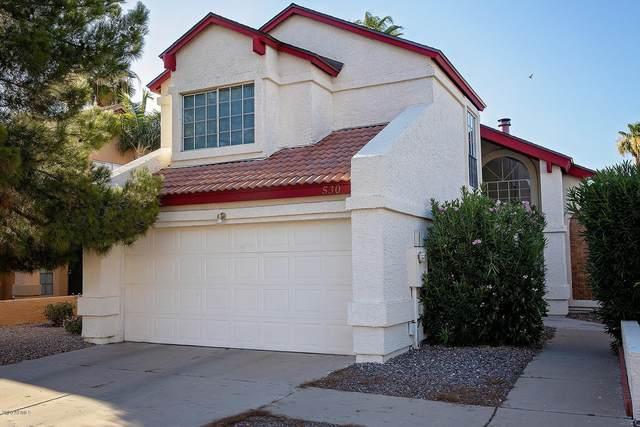 530 E Topeka Drive, Phoenix, AZ 85024 (MLS #6097558) :: Nate Martinez Team