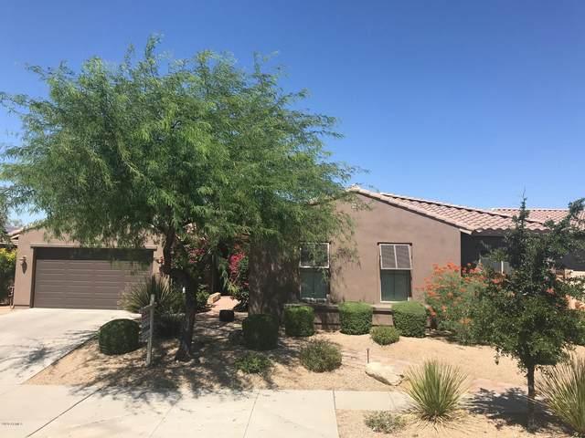 31714 N 15TH Glen, Phoenix, AZ 85085 (MLS #6097589) :: Nate Martinez Team