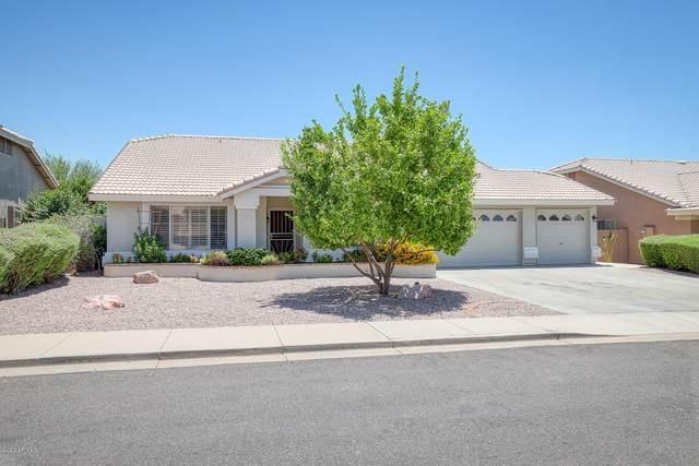 6545 E Melrose Street, Mesa, AZ 85215 (MLS #6097597) :: Yost Realty Group at RE/MAX Casa Grande