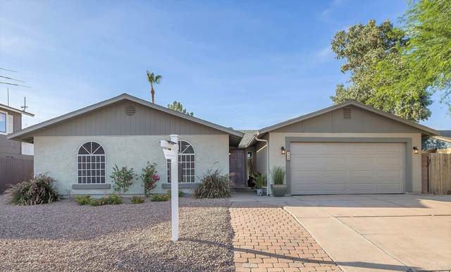 566 W Pantera Avenue, Mesa, AZ 85210 (MLS #6097713) :: Brett Tanner Home Selling Team