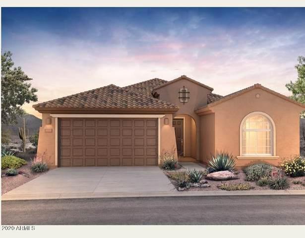 25934 W Deer Valley Road, Buckeye, AZ 85396 (MLS #6097719) :: Relevate | Phoenix