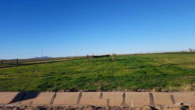 0 E Shedd Road, Eloy, AZ 85131 (MLS #6097732) :: The Results Group