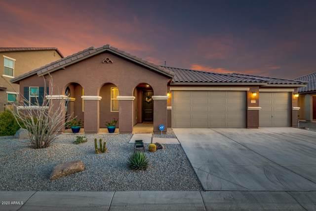 40521 W Marion May Lane, Maricopa, AZ 85138 (MLS #6097769) :: Arizona 1 Real Estate Team