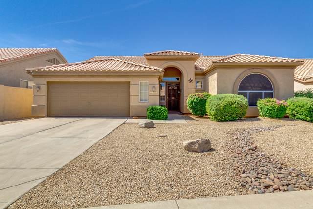 1409 W Park Avenue, Gilbert, AZ 85233 (MLS #6097814) :: Homehelper Consultants