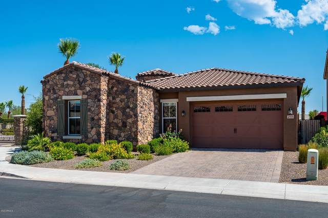2919 E Madison Vistas Drive, Phoenix, AZ 85016 (MLS #6097839) :: Dijkstra & Co.
