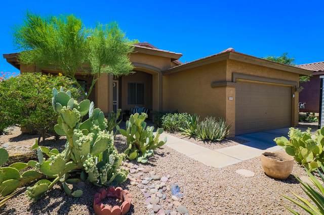 18387 W Mcneil Street, Goodyear, AZ 85338 (MLS #6097849) :: Devor Real Estate Associates