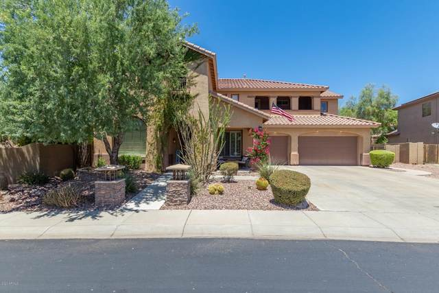 40122 N Hickok Trail, Phoenix, AZ 85086 (MLS #6097858) :: My Home Group