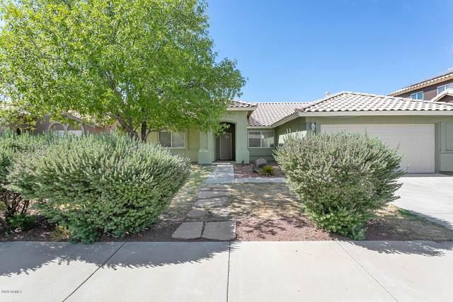 16233 W Desert Bloom Street, Goodyear, AZ 85338 (MLS #6097860) :: Brett Tanner Home Selling Team