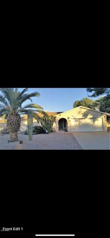 14223 N 42nd Street, Phoenix, AZ 85032 (MLS #6097875) :: The Bill and Cindy Flowers Team