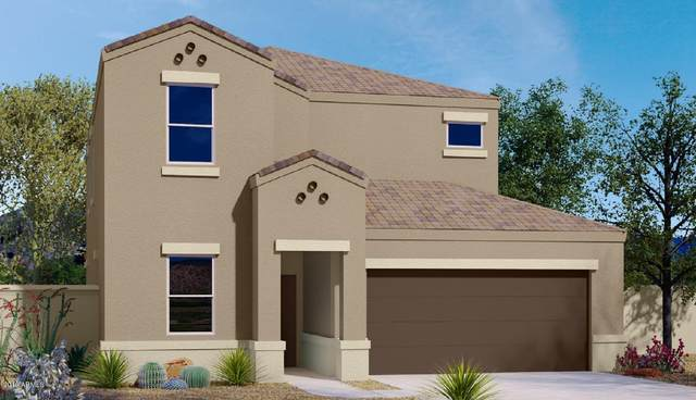 3152 N 310TH Lane, Buckeye, AZ 85396 (MLS #6097926) :: Dijkstra & Co.