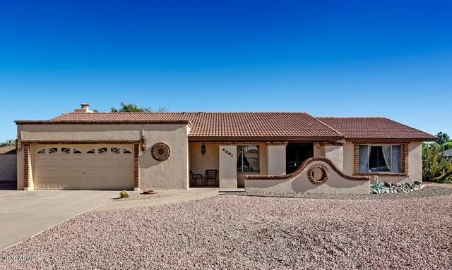 4601 E Sheena Drive, Phoenix, AZ 85032 (MLS #6097932) :: Brett Tanner Home Selling Team