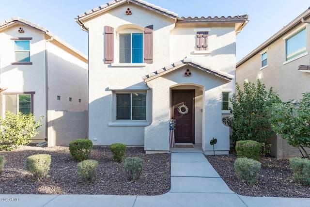 2511 N 73RD Drive, Phoenix, AZ 85035 (MLS #6097977) :: Dijkstra & Co.