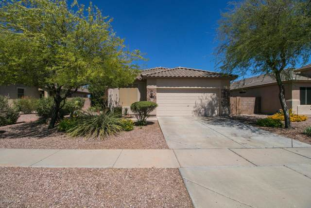 17451 N 169TH Drive, Surprise, AZ 85374 (MLS #6097986) :: Brett Tanner Home Selling Team