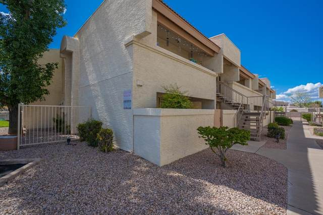 4150 E Cactus Road #117, Phoenix, AZ 85032 (MLS #6098026) :: Midland Real Estate Alliance