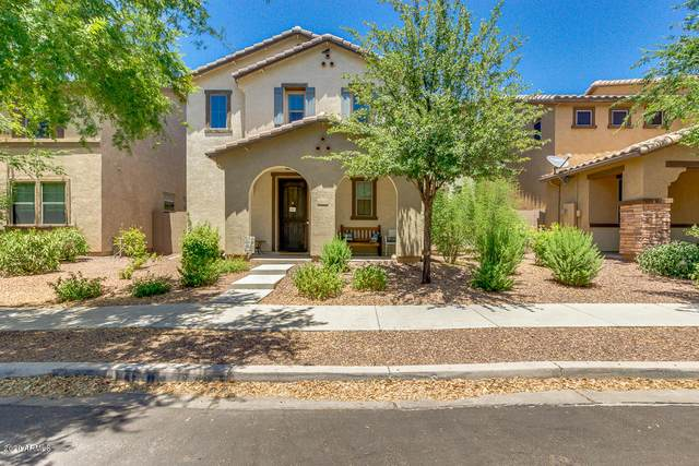 4066 E Cathy Drive, Gilbert, AZ 85296 (MLS #6098056) :: Scott Gaertner Group