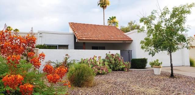 17014 E Calle Del Sol, Fountain Hills, AZ 85268 (MLS #6098111) :: My Home Group