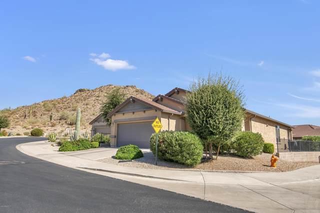 31665 N Skyline Court, San Tan Valley, AZ 85143 (MLS #6098137) :: Nate Martinez Team