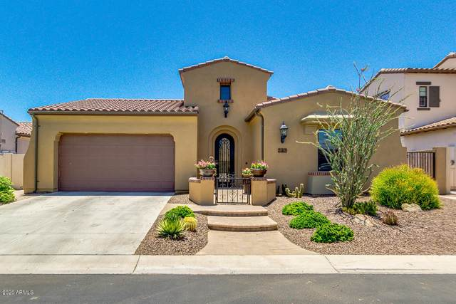 14441 W Desert Flower Drive, Goodyear, AZ 85395 (MLS #6098145) :: Brett Tanner Home Selling Team