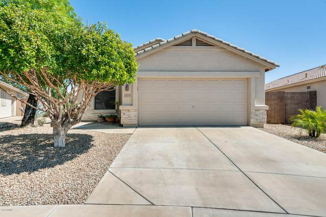 19819 N 34TH Place, Phoenix, AZ 85050 (MLS #6098158) :: Selling AZ Homes Team