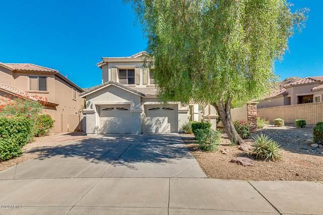 3030 W Silver Fox Way, Phoenix, AZ 85045 (MLS #6098238) :: Relevate | Phoenix