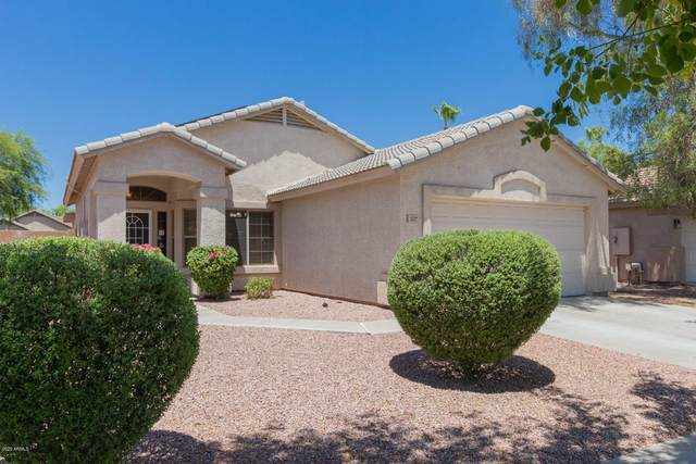 1342 S 172ND Lane, Goodyear, AZ 85338 (MLS #6098239) :: Devor Real Estate Associates