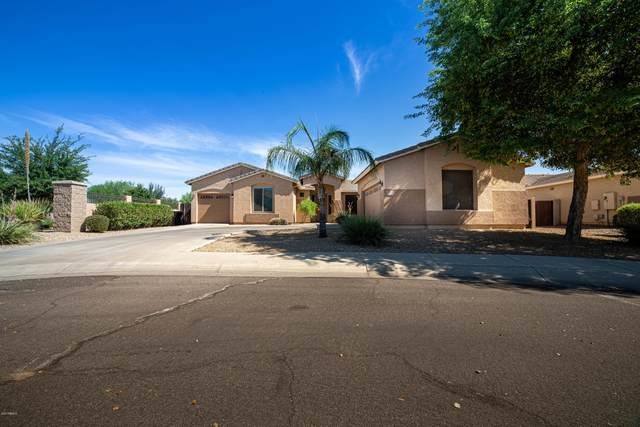 14538 W Roanoke Avenue, Goodyear, AZ 85395 (MLS #6098248) :: Brett Tanner Home Selling Team