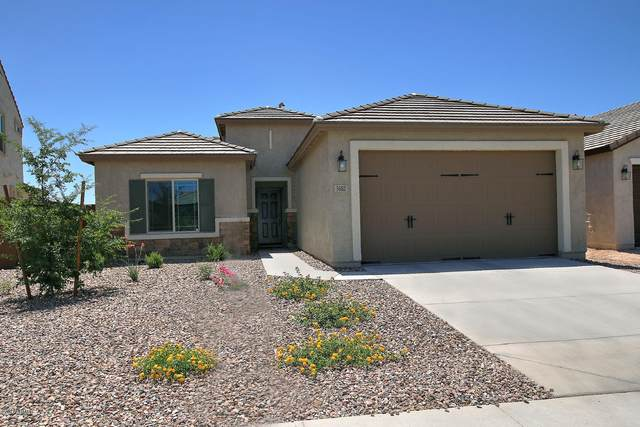 3682 N Barrington Drive, Florence, AZ 85132 (MLS #6098256) :: Lucido Agency