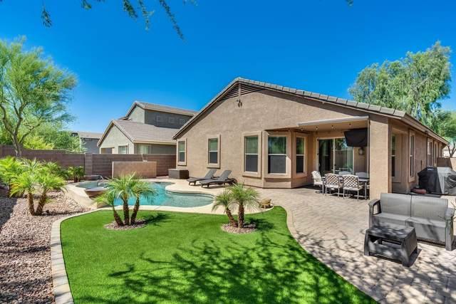 35205 N 30TH Drive, Phoenix, AZ 85086 (MLS #6098296) :: Nate Martinez Team