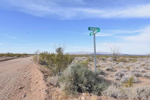 3495 S Lone Ranger Road, Yucca, AZ 86438 (MLS #6098314) :: My Home Group