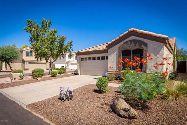 250 W Juniper Avenue #61, Gilbert, AZ 85233 (MLS #6098316) :: Lifestyle Partners Team