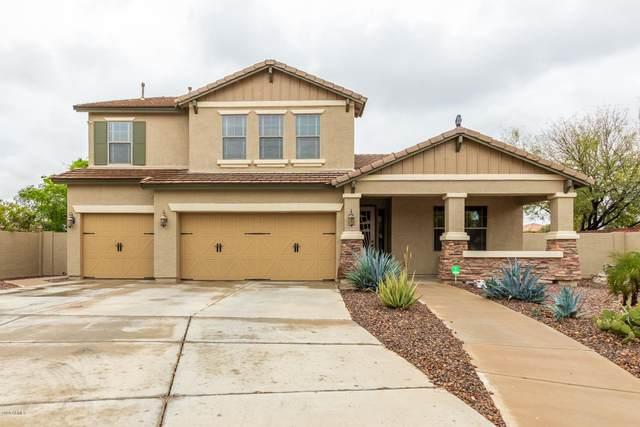 12432 N 142ND Court, Surprise, AZ 85379 (MLS #6098334) :: Klaus Team Real Estate Solutions