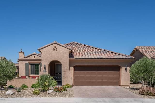 21720 N 265TH Drive, Buckeye, AZ 85396 (MLS #6098396) :: The Luna Team