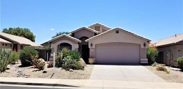 6055 E Rochelle Street, Mesa, AZ 85215 (MLS #6098410) :: Yost Realty Group at RE/MAX Casa Grande