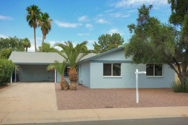 3614 S Newberry Road, Tempe, AZ 85282 (MLS #6098432) :: My Home Group