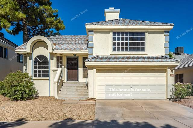 1148 N Corsica Drive, Chandler, AZ 85226 (MLS #6098461) :: Homehelper Consultants