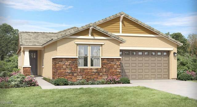 14639 W Windrose Drive, Surprise, AZ 85379 (MLS #6098491) :: CANAM Realty Group