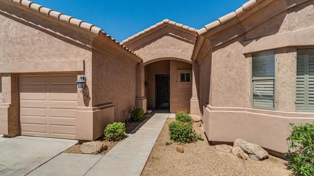 26289 N 47TH Place, Phoenix, AZ 85050 (MLS #6098542) :: Devor Real Estate Associates