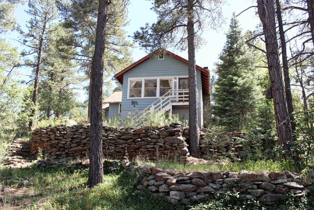301 Lake View Drive, Mormon Lake, AZ 86038 (MLS #6098556) :: Scott Gaertner Group