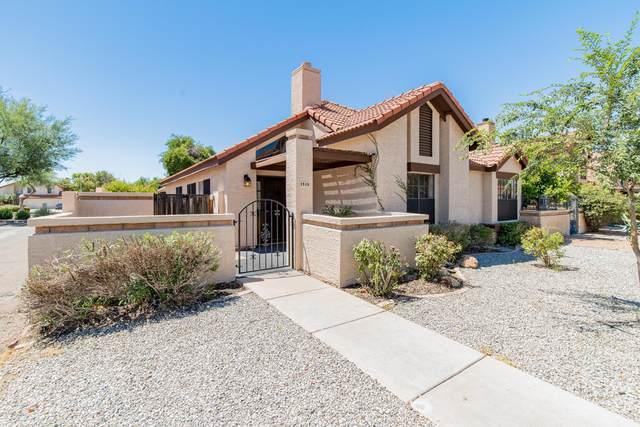 1919 E Velvet Drive, Tempe, AZ 85284 (MLS #6098589) :: Brett Tanner Home Selling Team