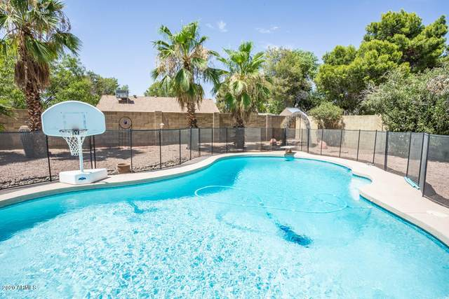 1406 E Jasper Drive, Chandler, AZ 85225 (MLS #6098595) :: Conway Real Estate