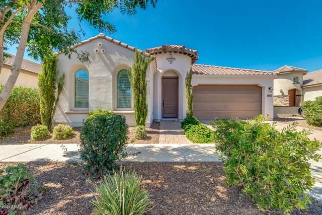 10664 E Lincoln Avenue, Mesa, AZ 85212 (MLS #6098624) :: Nate Martinez Team