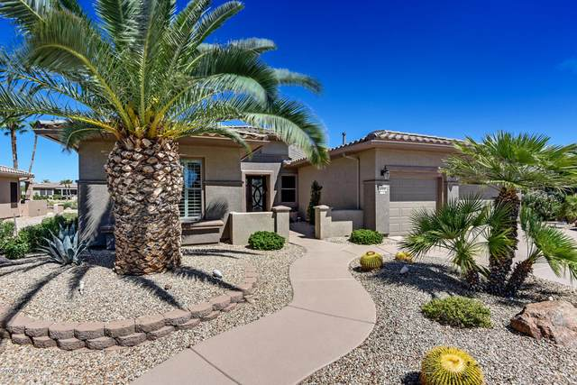 17232 W Sky Mist Way, Surprise, AZ 85387 (MLS #6098631) :: Scott Gaertner Group