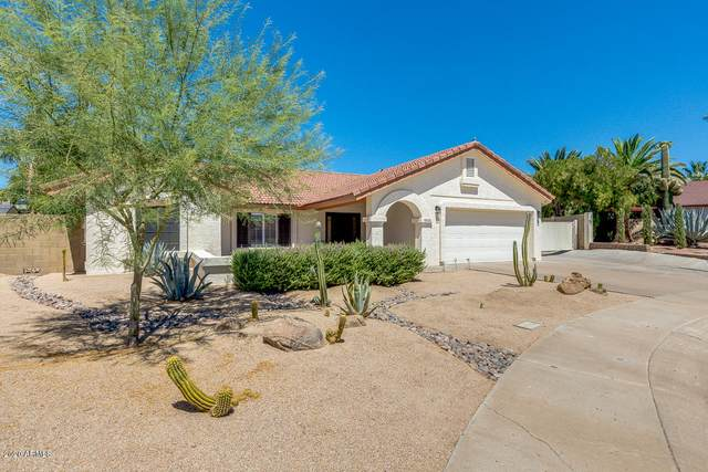 18826 N 36TH Way, Phoenix, AZ 85050 (MLS #6098632) :: Devor Real Estate Associates