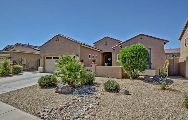 16813 W Hammond Street, Goodyear, AZ 85338 (MLS #6098637) :: Conway Real Estate